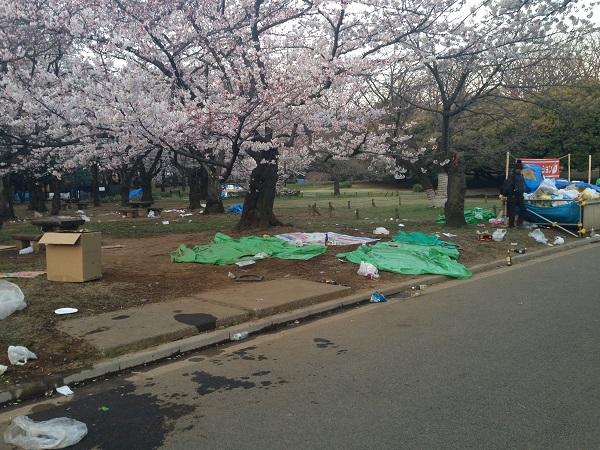花 見 客 、 ゴ ミ を 完 全 放 置 こ れ が 日 本 人 の 民 度 だ !