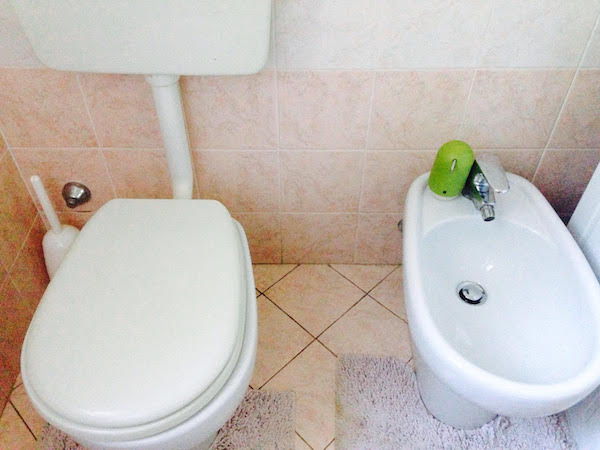 【海外】ヨーロッパのトイレの横にある『アレ』はなんなのか?