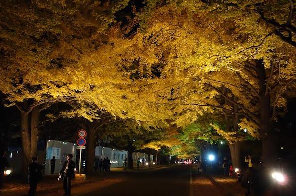 しらべぇ1031北海道大学6