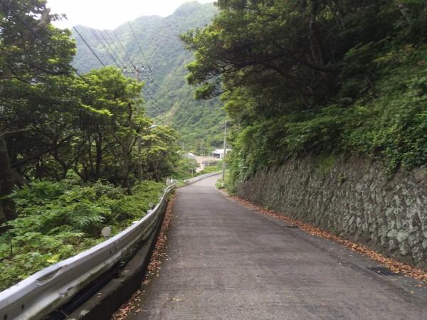 しらべぇ0605青ヶ島2