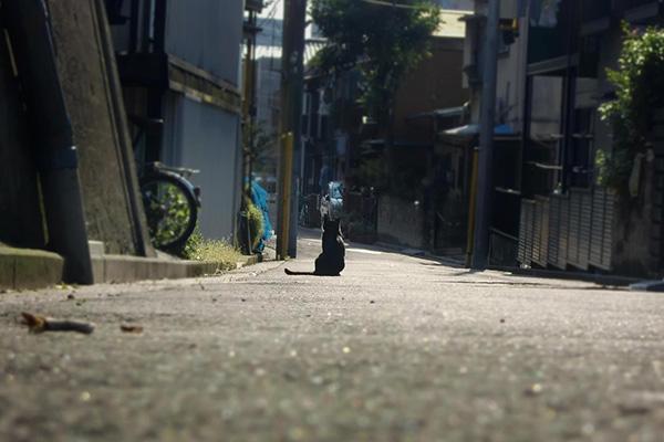 地方の人が抱く「東京のイメージ」に驚き…移住経験者が語る