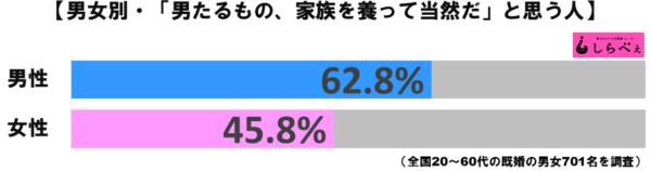 夫グラフ1