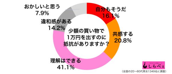買い物で1万円グラフ
