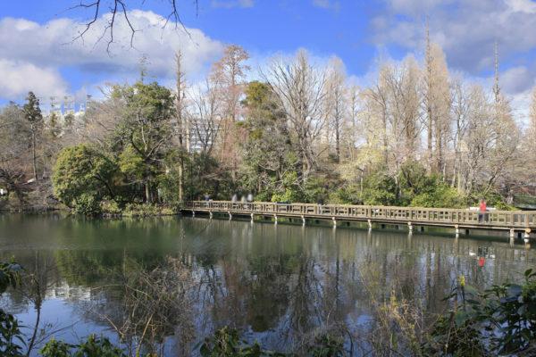 井の頭公園