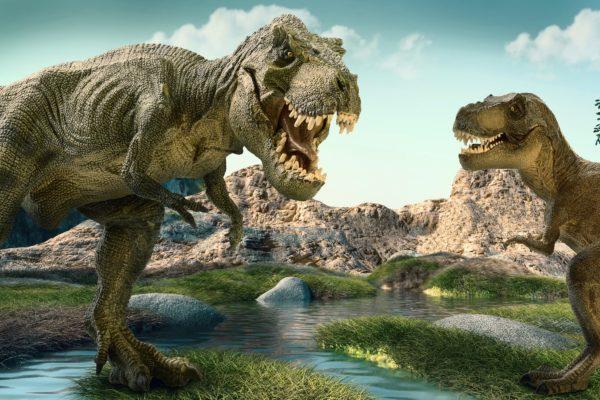 笑ってコラえて』福井県で恐竜の...