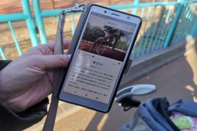 いつでもどこでも動物園を楽しめるアプリ『one zoo』を子供に渡したら予想外の展開になった