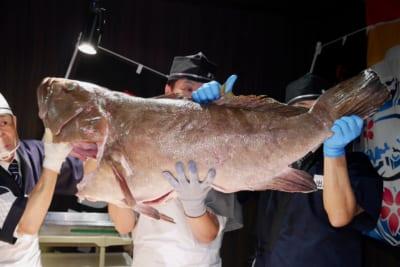 「幻の魚」クエ漁に同行したらまさかのヒット 40kgオーバーの巨大魚は本当に釣れるのか